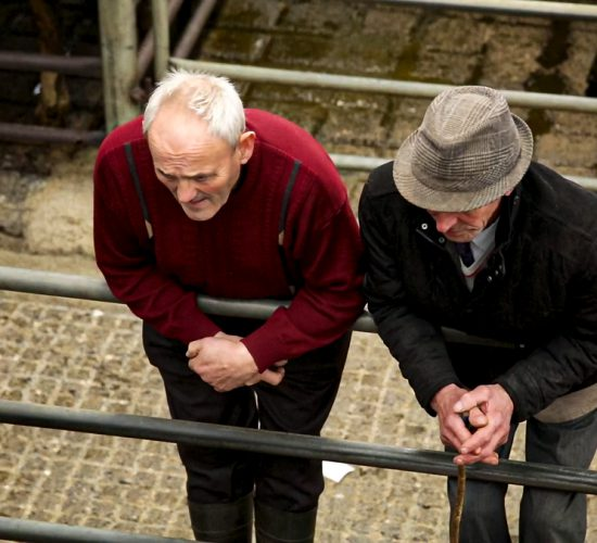 Agricultural bodies join forces to form NI Rural Health Forum