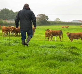 'Be Summer Ready' campaign: Farmers reminded to be aware of all risks