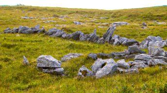 Payments to farmers begin under Burren Programme