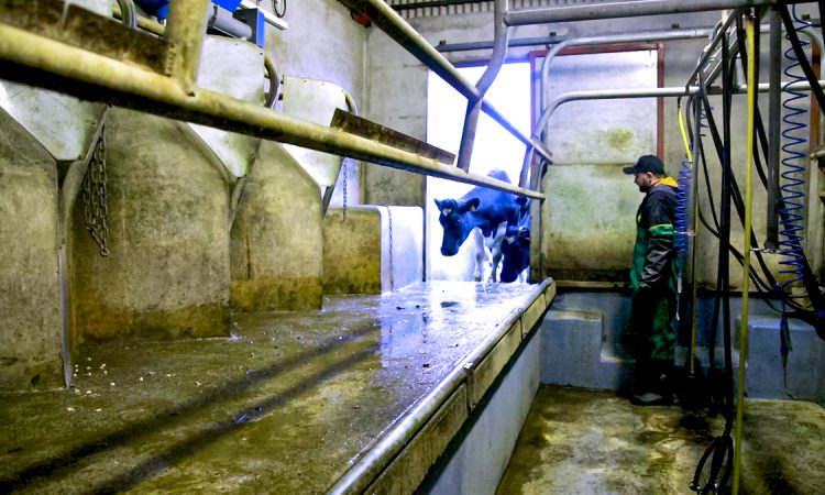 Outlook 'generally positive' for August milk price