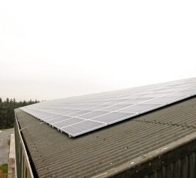 'Huge opportunity' for solar on shed roofs…but what barriers must be overcome?
