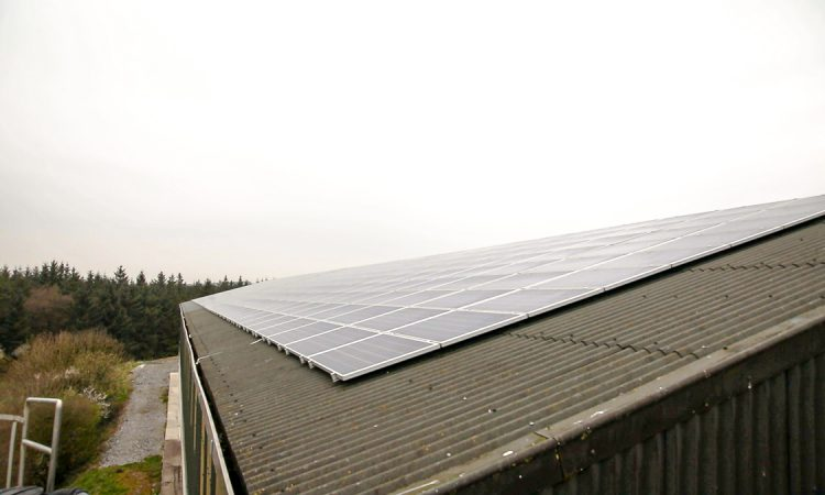 Solar panels on sheds a 'win-win' for Irish emissions efforts – MEP