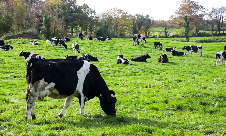 How will biogenic methane be treated under the new Climate Action Bill?