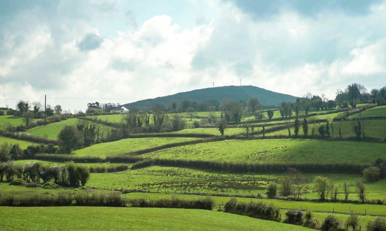 IFA 'gets commitment' of no plans for more land designations