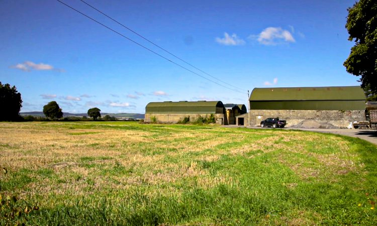 Farmers need 'vital' stamp duty tax reliefs to be retained – ICMSA