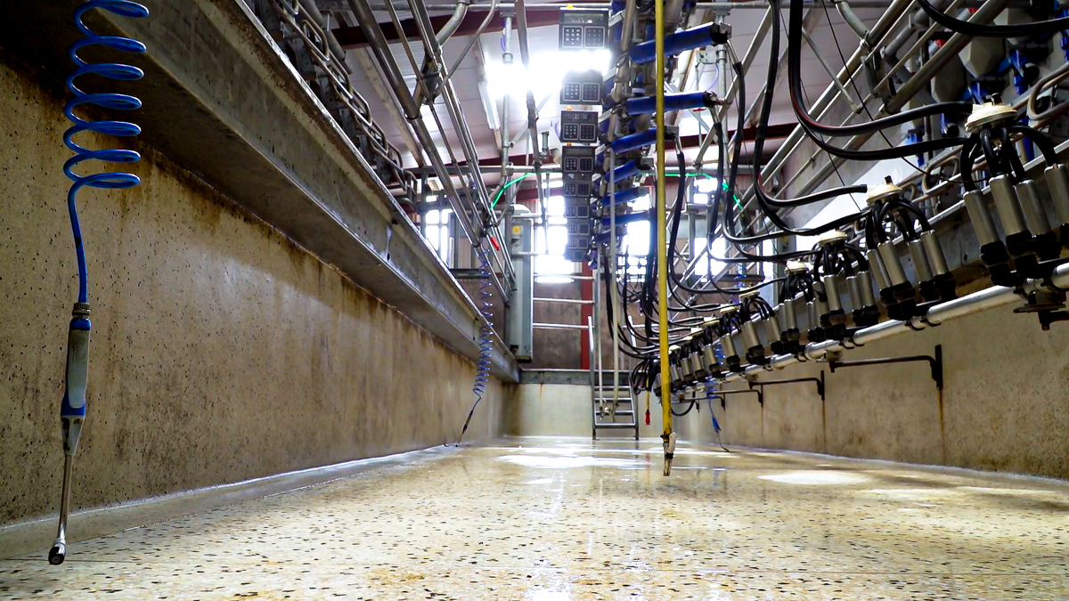 Glanbia milk supply management 'first step to new quota' – IFA