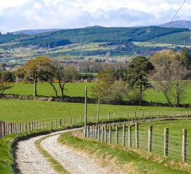 Greater land designation 'would have significant impact on young farmers' ability to farm'
