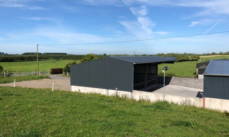 Buildings Focus: A cheap and tidy 3-bay slatted unit for 20 cows in Co. Galway