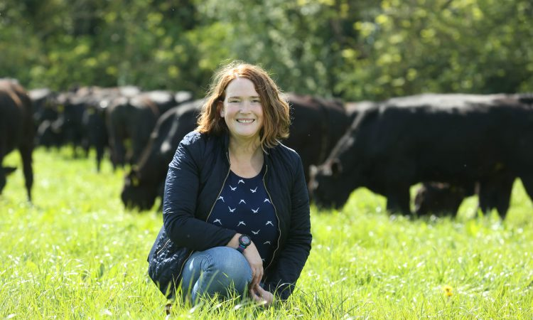 Certified Irish Angus launches new campaign to better connect with consumers