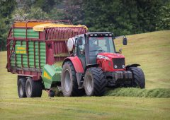 'Over the years, the silage DM content has increased; but nutritional quality hasn't'