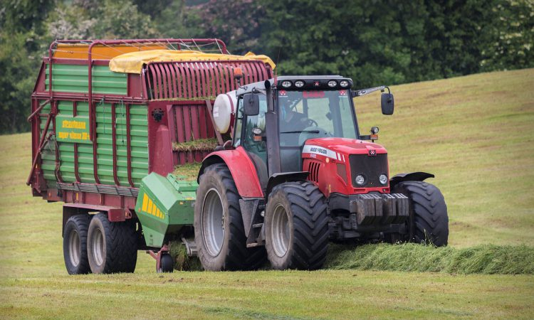 'Over the years, silage DM content has increased; but nutritional quality hasn't'