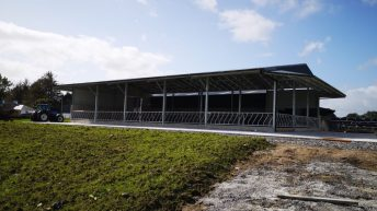 Buildings Focus: Brand new 50-cubicle shed for an expanding dairy herd in Co. Galway