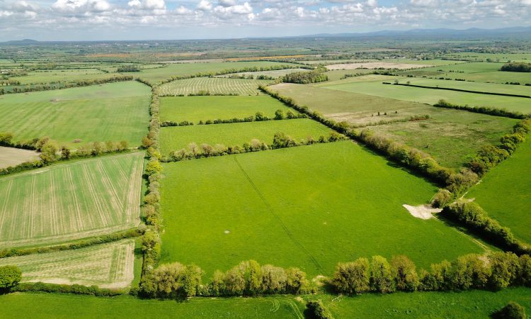 2 plots for sale by private treaty in the 'Thoroughbred County'