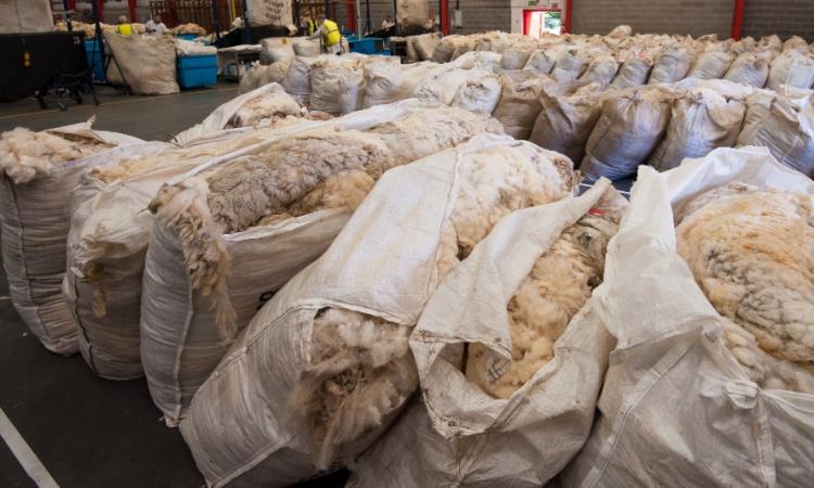 NI sheep farmers urged to 'use it or lose it' with wool board