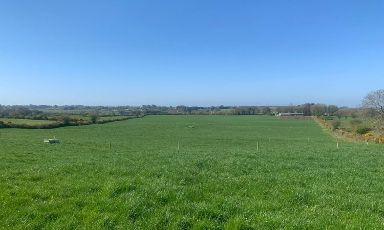 GrowthWatch: Dry weather takes its toll in some areas