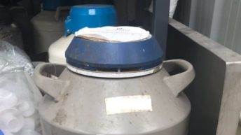 Gardaí investigate theft of liquid nitrogen and machinery from farmyard