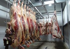 'Inspections of meat plants should be carried out unannounced'