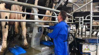 Liquid milk supplies rise but farmer numbers drop in 2019