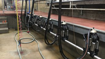 Analysis: European dairy markets continue to trend higher