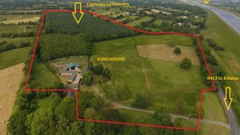 Rolling parkland and commercial forestry: 53ac idyllic roadside estate for sale