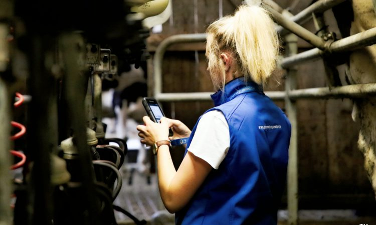 New milk recording initiative launched for Lakeland Dairies suppliers