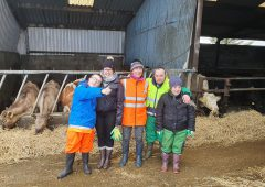 'As a mother, I saw the real benefits of  farming on family life'