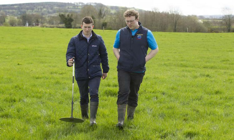 Correct supplementation will maintain production during poor grass growth