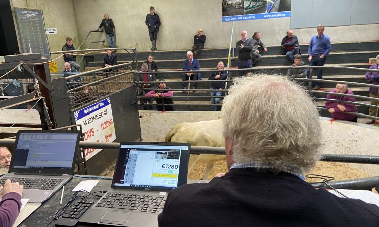 The new normal at Ballyjamesduff Mart