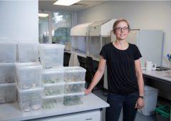 UCC的新股份公司科学学士学位:第一年是如何表现?