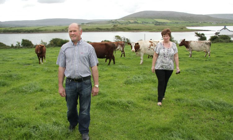 Diversification key for this Burren-based dairy farming family
