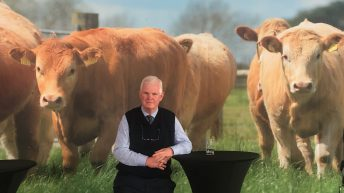'Herd health planning saves money and makes more profit on the farm'