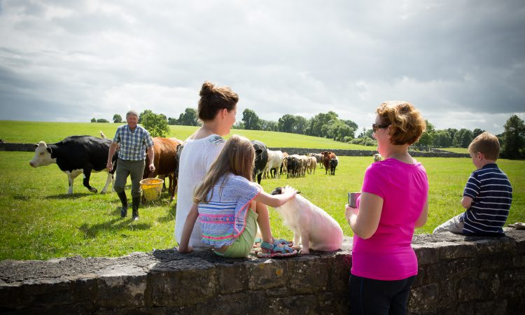 Farmhouse B&B providers work to instill confidence
