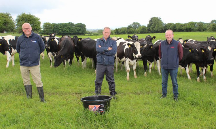 'Increased demand' for feed blocks to prevent summer mastitis