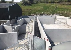 Infrastructure Focus: A brand new handling unit for a 750-ewe flock in Co. Kerry