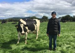KEENAN delivering impressive herd health benefits