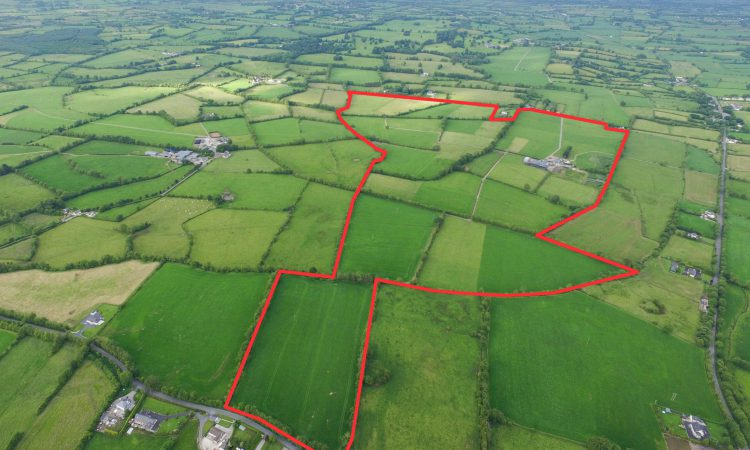 Turnkey residential dairy farm in the heart of the Golden Vale with €16,000 in entitlements
