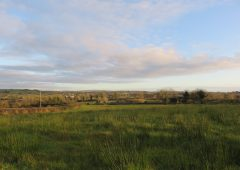 Residence, land and forestry up for grabs with entitlements – in Co. Monaghan