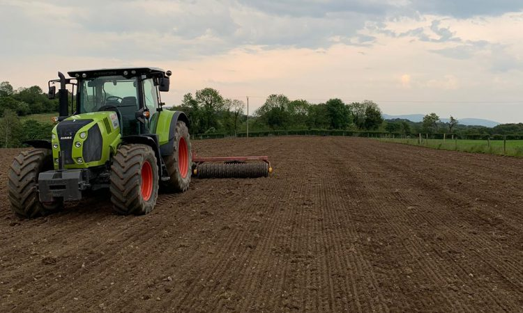 Reseeding with DLF's NxGen tetraploids for a cut above the rest