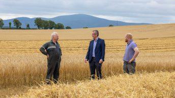 IFA calls on farmers and merchants to use Irish grain