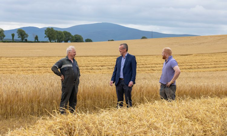 IFA calls on farmers and merchants to use Irish grain