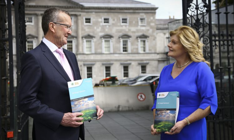 Schemes, supports and diesel exemption dominate IFA's pre-budget submission