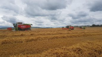 Watch: Harvest kicks off…action from Kilkenny