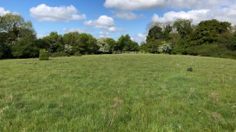 Land sale: 'Despite Covid-19 uncertainty, interest levels were strong from the outset'