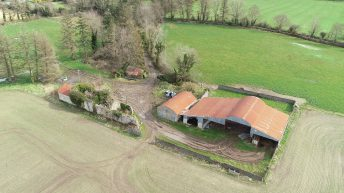 3 separate lots spanning 188ac to go on the block in Co. Carlow
