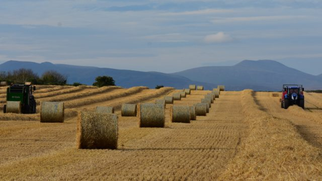 Ploughing in straw: What's all that about?