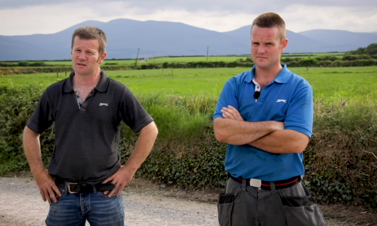 The Long brothers' integrated approach to dairy and beef farming