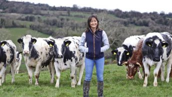 'Advances in technology have done little to ensure farm safety'