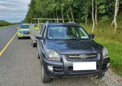Driver of 4X4 towing trailer reined in after 'dummy' deed