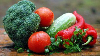 Minister 'lacking vision' for organic farming – Matt Carthy