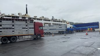 Libyan export ship departs Waterford without bulls